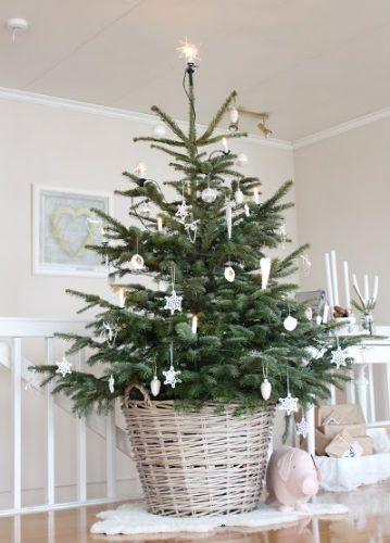 Tree in a basket Ideje za stanovanje Pinterest Christmas tree