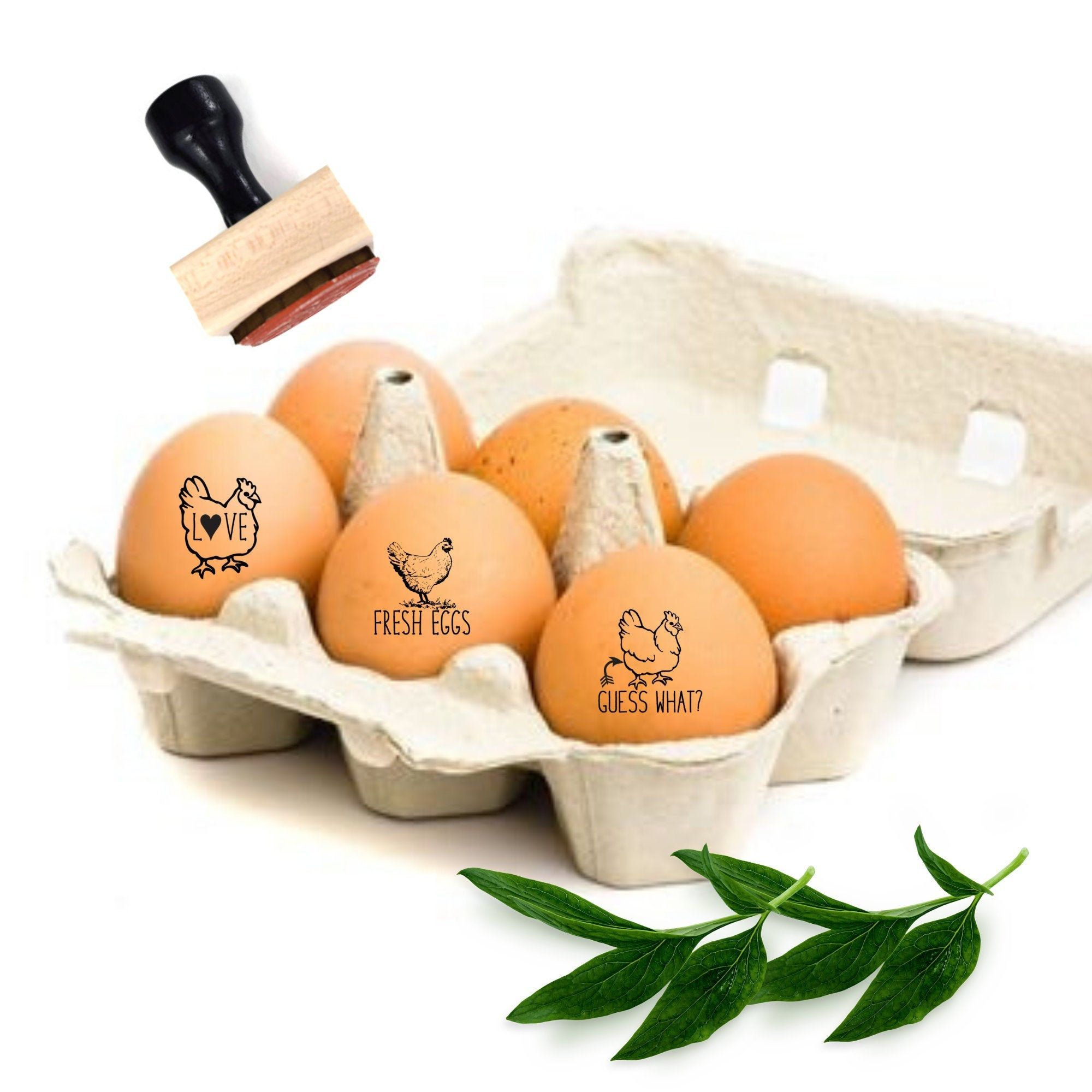Egg stampers funny egg stamps chicken lover gift backyard
