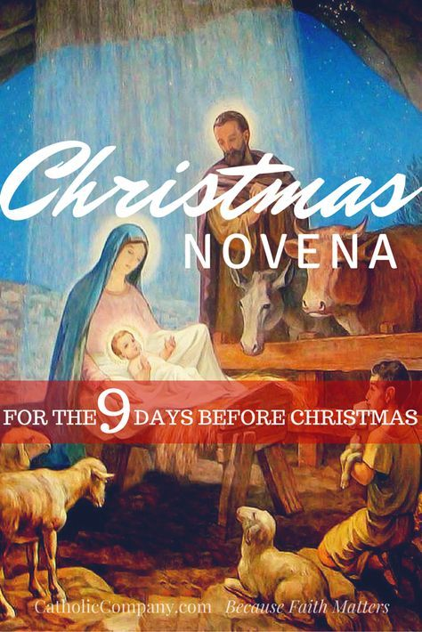 pray this christmas novena daily from december 16 to christmas eve - Christmas Novena