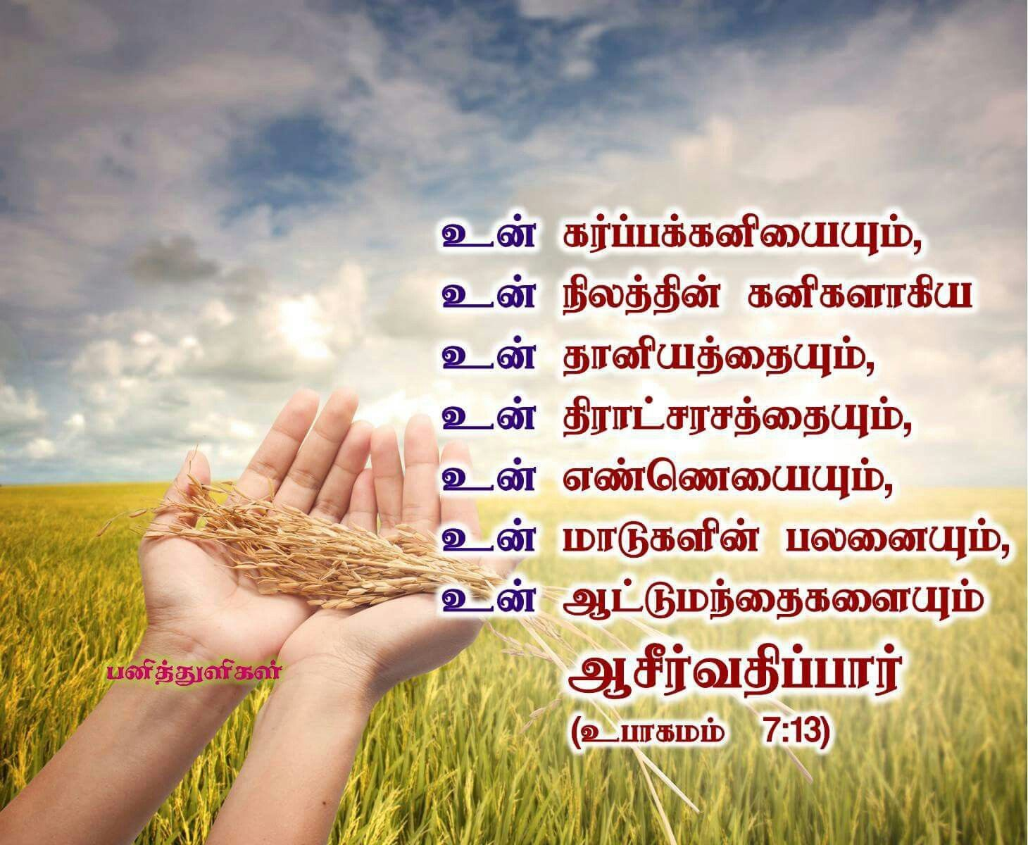 Our lord bless you | பனித்துளிகள்-Tamil bible verse ...