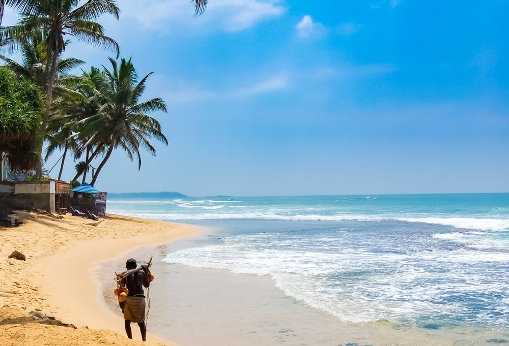 How to Surf Sri Lanka Guide - Surfing Spots Based on surfer's level, Seasons to Visit, and Useful Tip, for an Ultimate Surf Holiday.