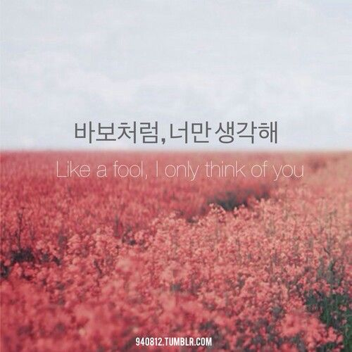 Like a fool, I only think of you | Korean 101 | Pinterest | Korean ...
