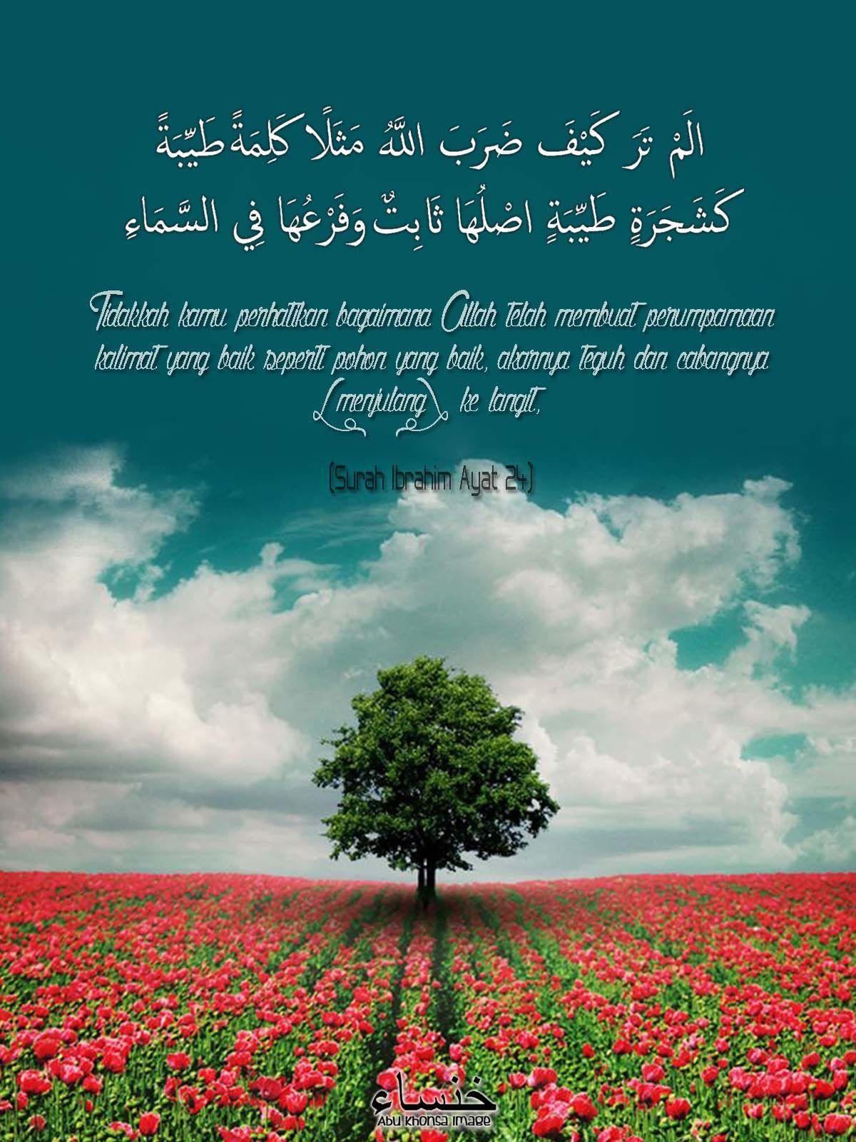 Surah Ibrahim Ayat 24   Ayat, Langit