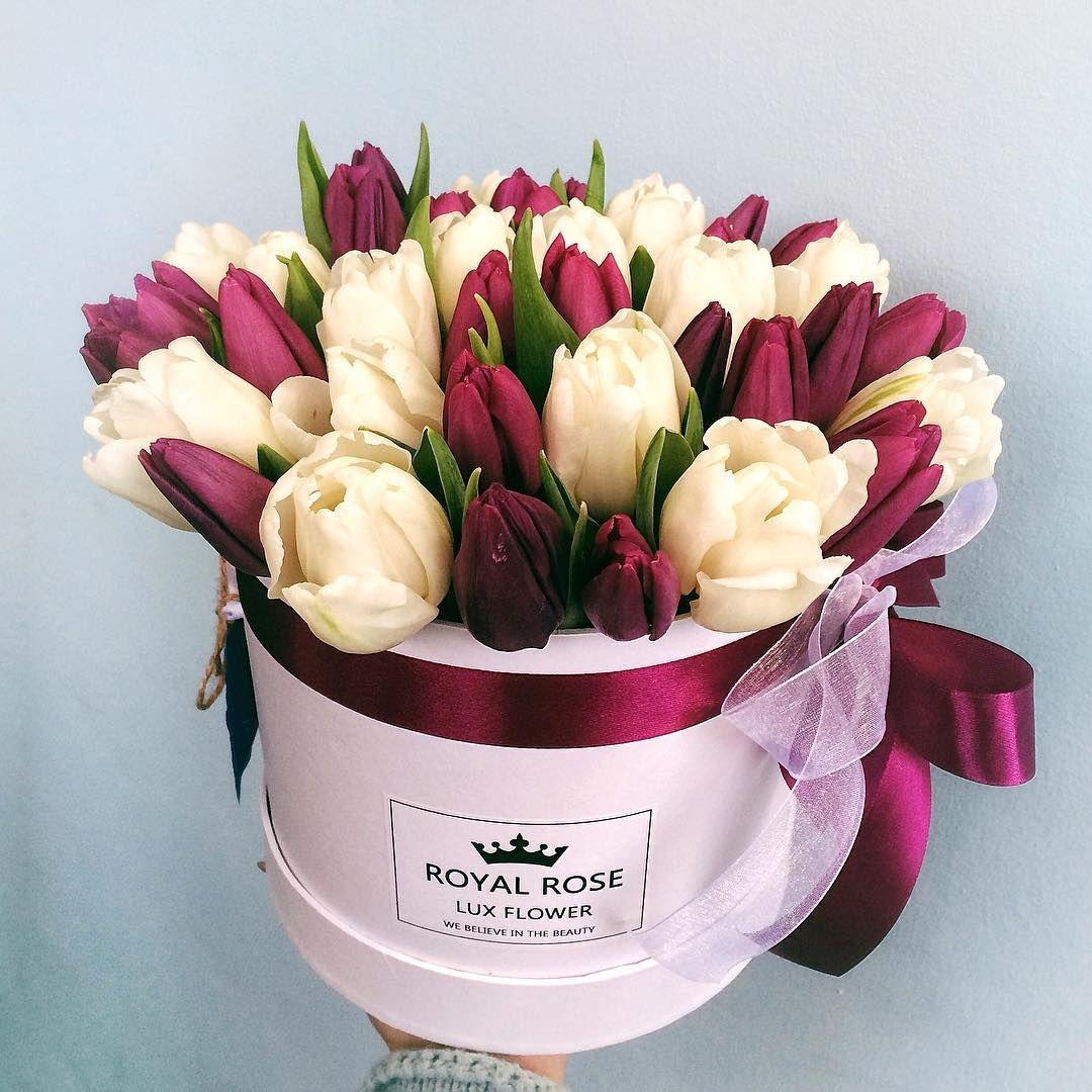 Цветы интернету, разноцветные букет из тюльпаны в коробке