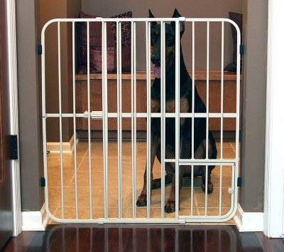 Dog Containment Gates Carlson Expandable Gate 32h 26 42w W
