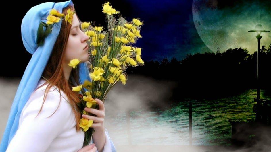 Sogni perlustrano giardini in fiore, dove echeggia ancora l'amato passo di chi si è disperso oltre le malinconiche colline dei desideri irrealizzati, ghermito dagli artigli dell'inesorabile tempo. Sogni inseguono il dolce ricordo di baci, di abbracci d'ombre avvinghiate dall'amore che rendono meno cieco il dolore arroventato da un lontano abbandono. Sogni si allontanano nella notte con lucido sguardo:tacito pianto di pungenti spine nel cuore.    © Antonella P. Di Salvo