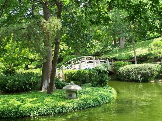 the Japanese Garden, Fort Worth. My garden, in my city, where I meet ...