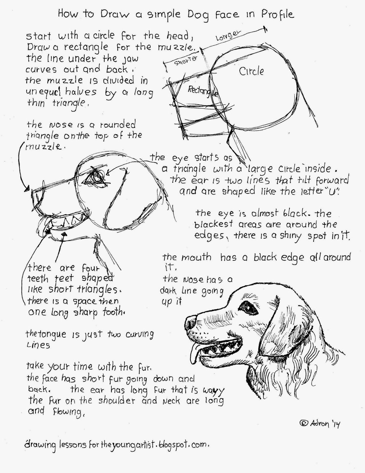 How To Draw A Simple Dog Face In Profile How To Draw Worksheets For Young Artist