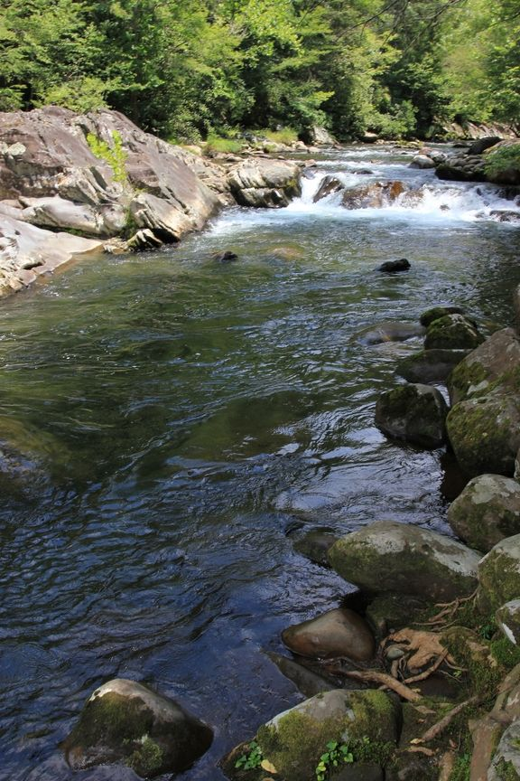 Beautiful River In The Smoky Mountains Places Worth