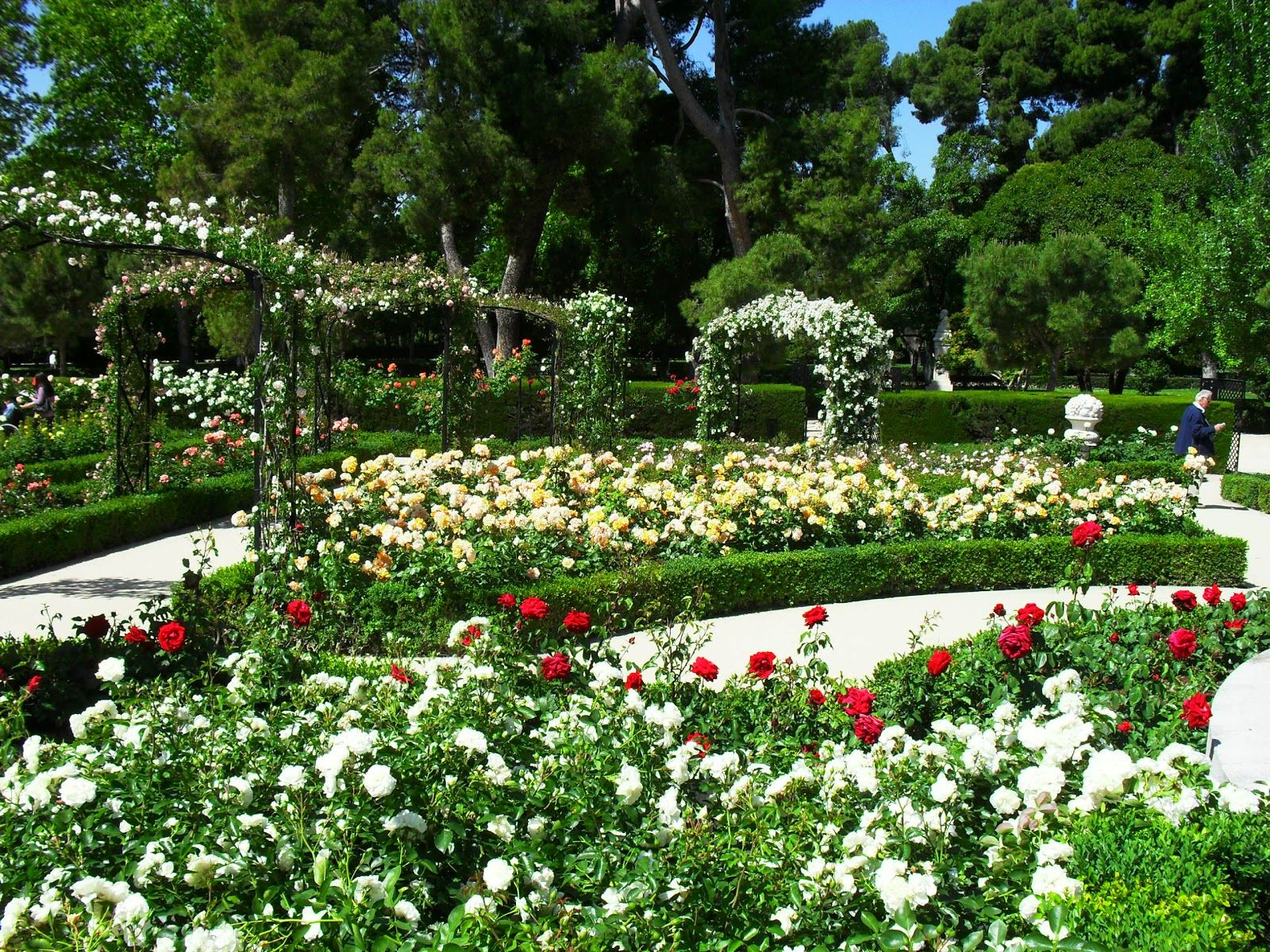 jardines modernos con flores buscar con google