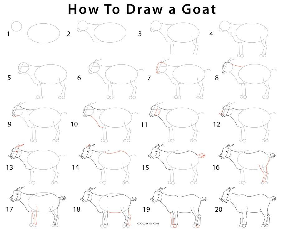 Simple Goat Drawing
