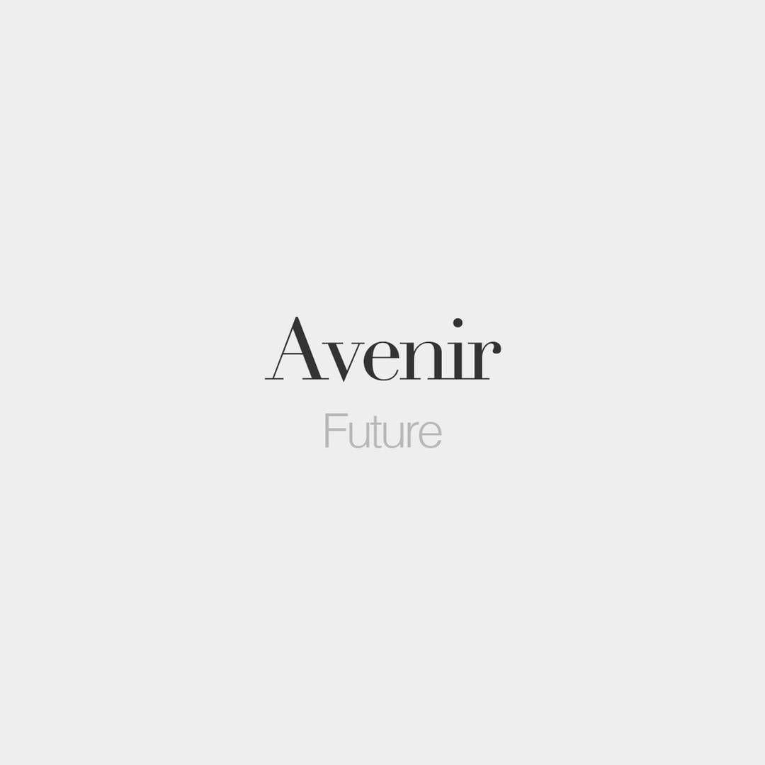 """Avenir (masculine word) | Future | /av.niʁ/"""