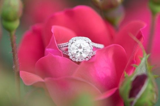 Lovely Georgetown DC Engagement Ring by Vanessa Smith Photography