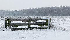boerenhek in de sneeuw
