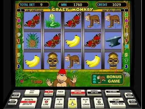 Крэзи монкей игровые автоматы турнир в покер онлайн бесплатно