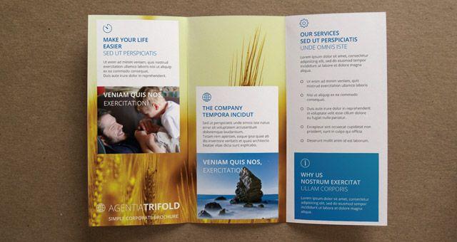 Agentia Tri Fold Brochure Template Brochure Templates Pixeden