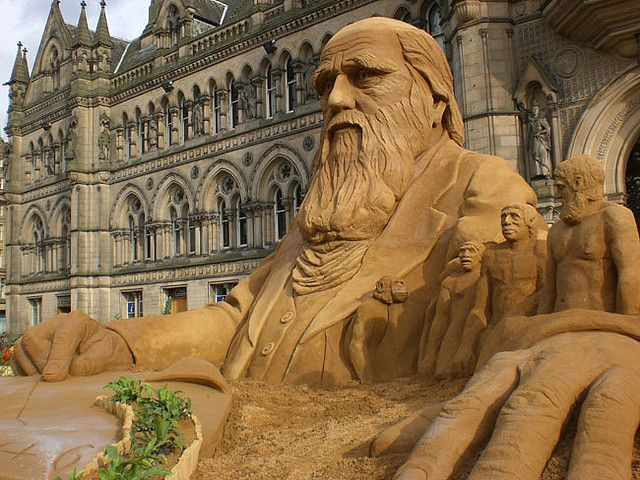 Charles darwin sand sculpture by Sand in Your Eye, via Flickr