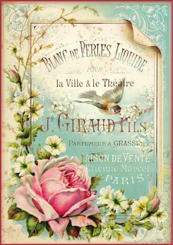 Mdk Nowe Wzory Papiery Ryzowe Stamperia A4 Plakaty Vintage Wzory I Ilustracje Vintage