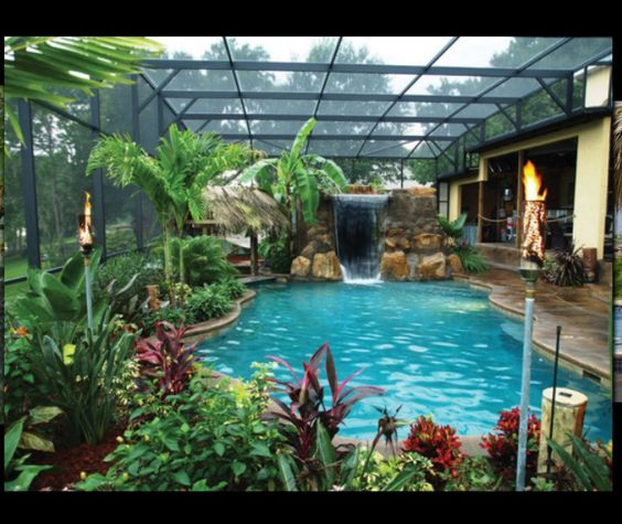 Jungle Theme Pool Florida Very Stylish Pool With Lots Of