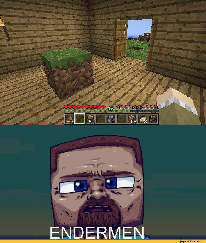 Hilarious Minecraft Memes
