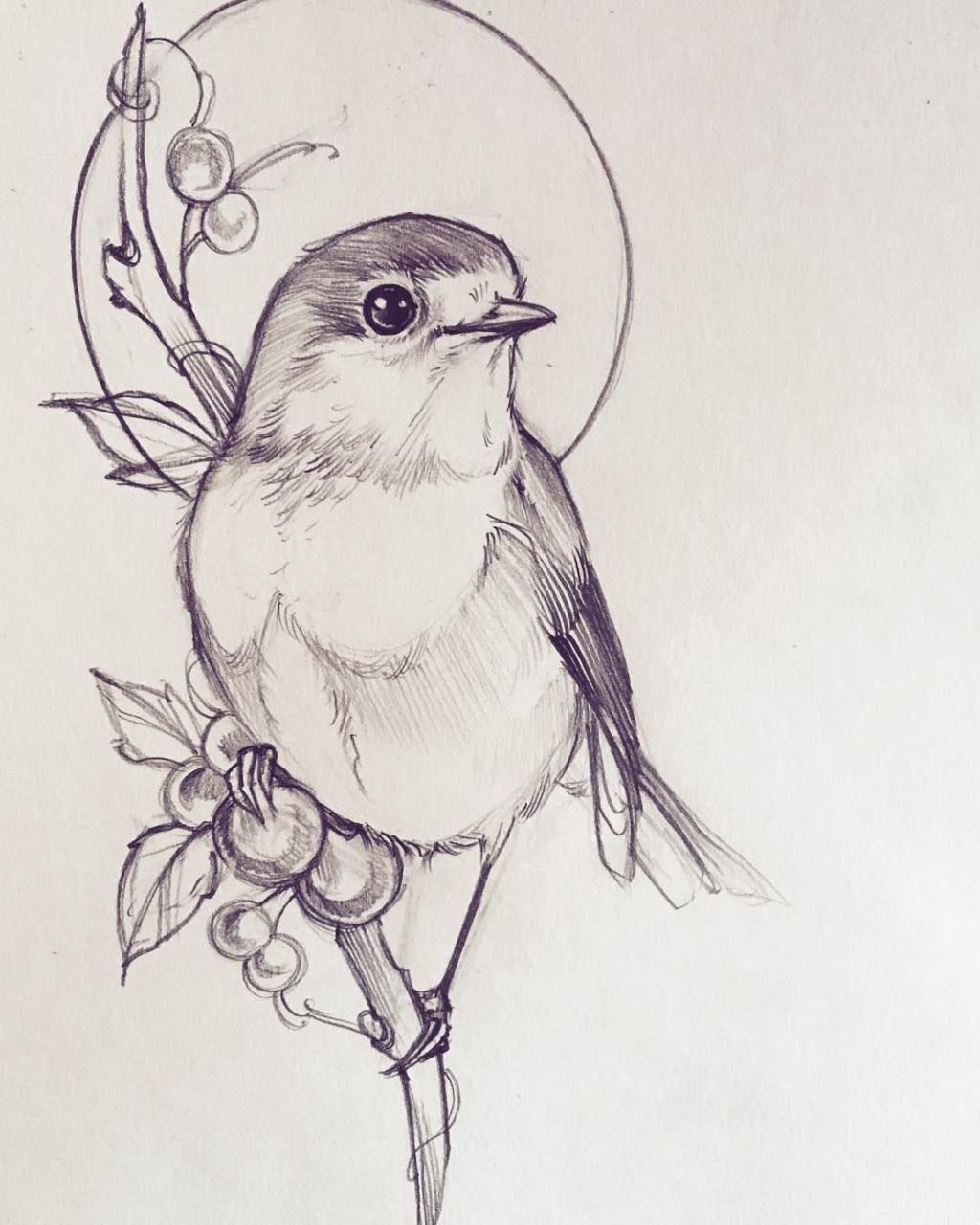 Pin By Yohan Marino On Tatuagem Coroa In 2020 Bird Drawings Bird Sketch Animal Sketches