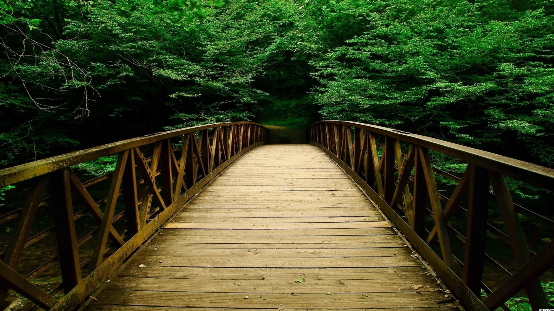 Free Nature Background Video Hd Free Download Download Backgrounds Image Nature Wallpaper Cave Nature Background Images Nature Backgrounds Bridge Wallpaper