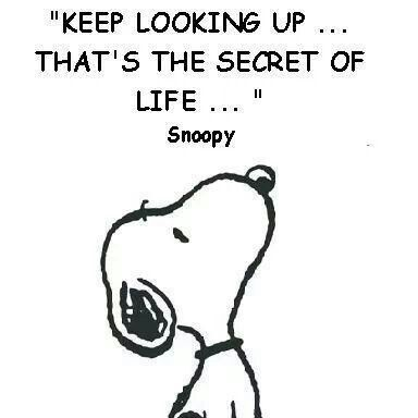 Keep Your Head Up Snoopy Quotes Inspirational Words Quotes