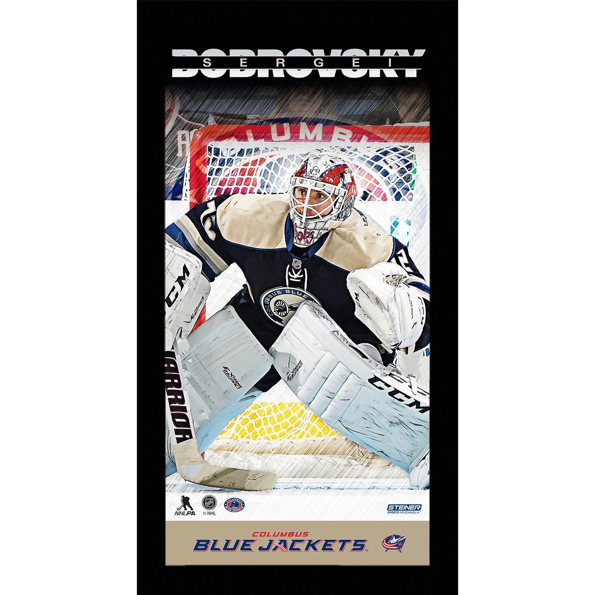 Sergei bobrovsky player profile x framed photo weights hockey