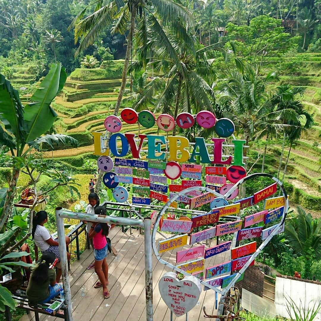 Rekomendasi Wisata Kuliner Bali Teras Padi Cafe Gianyar Ubud