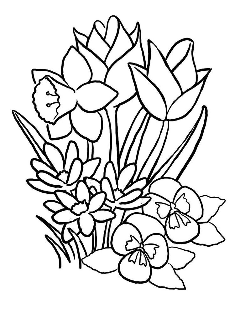 Spring Coloring Pages Flowers Pdf Everyone Dreams Of Spring Flowers During Winter In 2020 Mandala Coloring Pages Printable Flower Coloring Pages Spring Coloring Pages