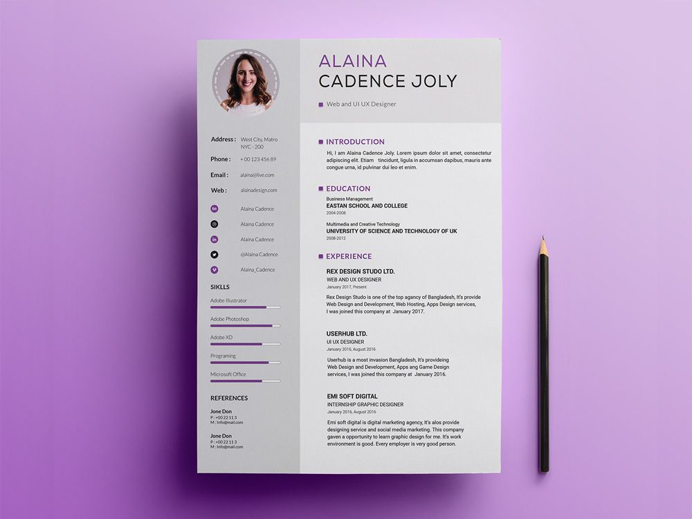 free clean professional resume template free file freebie
