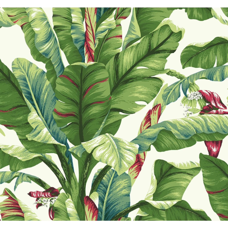 "Ashford Tropics 27' x 27"" Banana Leaf Wallpaper Plant"