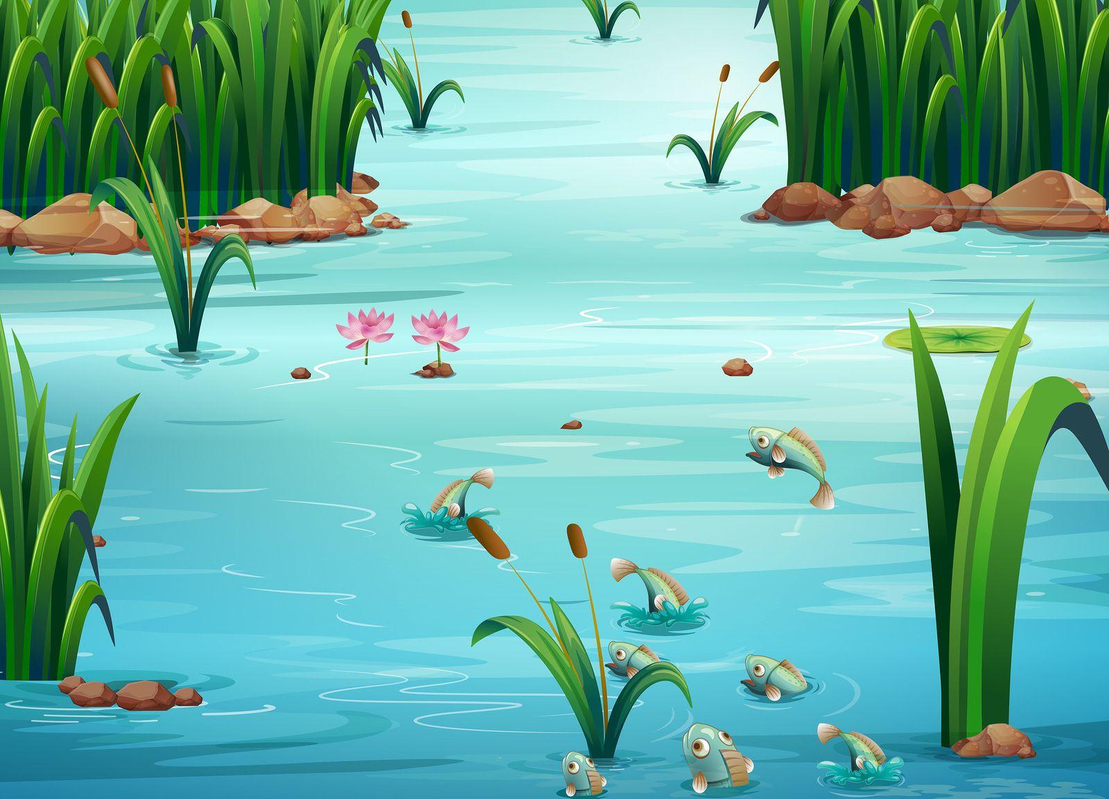 ветхого картинка мультяшного озера это приглашенный музыкант