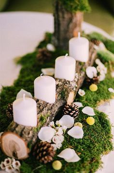 my wedding stuff pinterest wedding weddings holiday decorations garden weddings junglespirit Choice Image