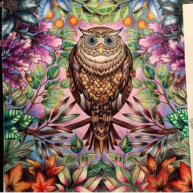 Instagram Photo By Coloring Secrets Aug 27 2015 At 8 03pm Utc Secret Garden Coloring Book Enchanted Forest Coloring Enchanted Forest Coloring Book