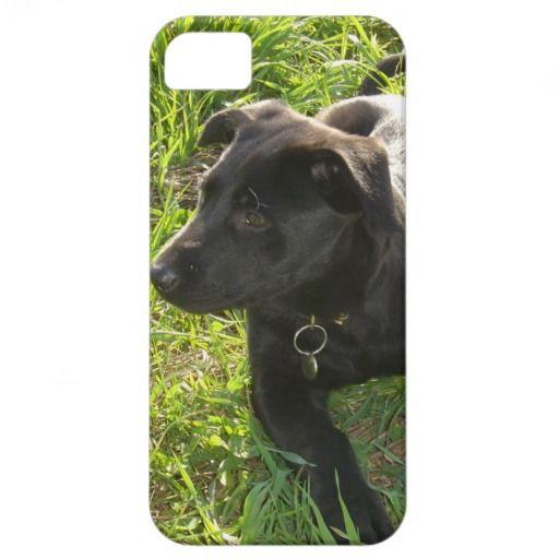 Lacquer Black German Shepherd iPhone 5 Cases $39.95