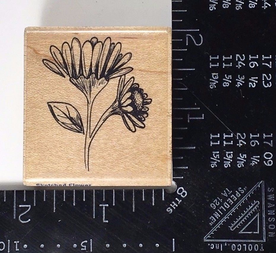 Botanical Rubber Stamp Flower Sketch Stampabilities Garden Blossom Petals #613 #Stampabilities