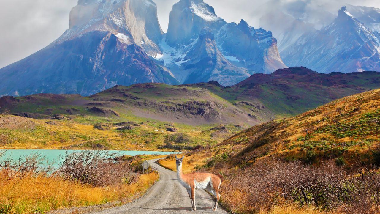 Auswandern Südamerika