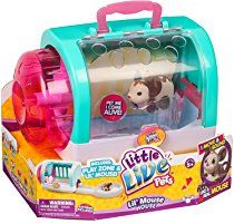 Little Live Pets Lil Mouse House Toy With Choc Bop Brown Mouse Little Live Pets Cool Toys Toys