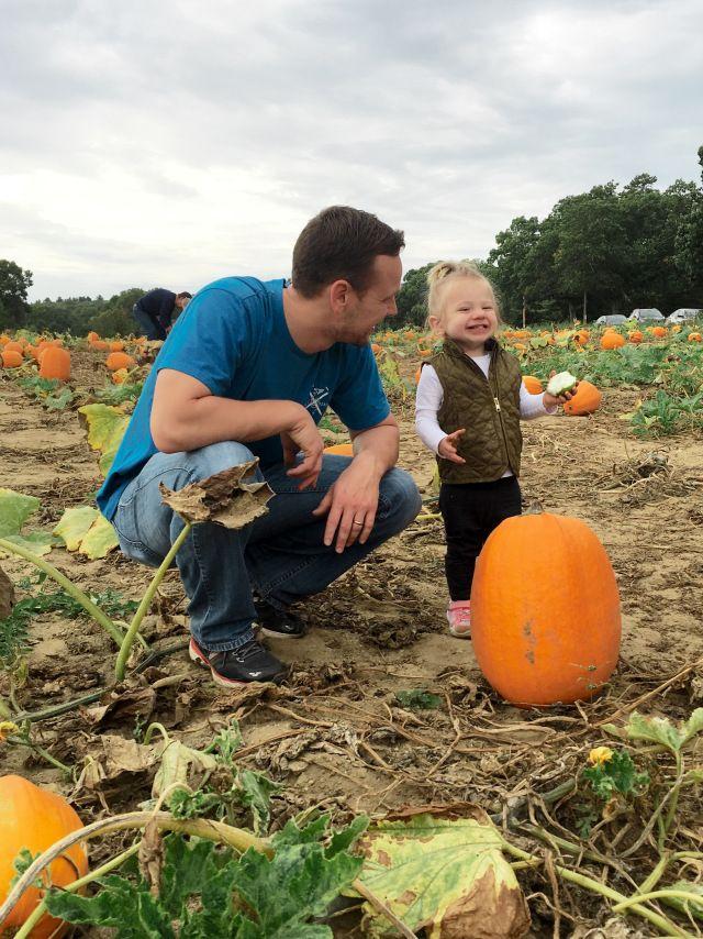 Pumpkin Patch And Halloween Decoration Inspirtation Leclerc