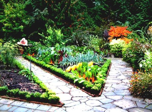 Front Yard Edible Garden Ideas For Country Home | HomeLK ...