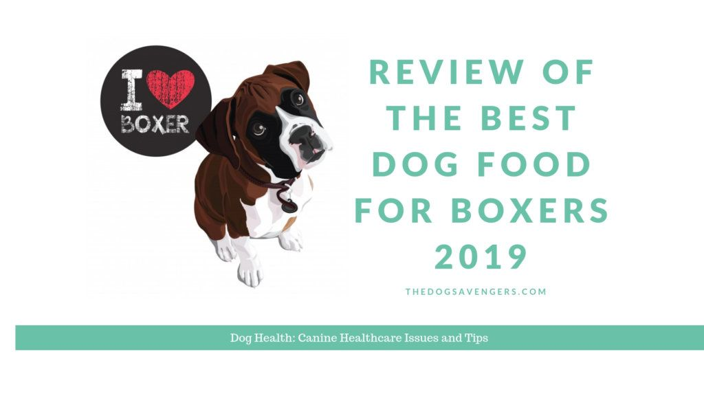 Review of the best dog food for boxers 2019 a healthy