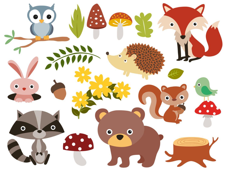 Forest Animals Baby Digital Clipart Woodland Animals Clip Art Zoo Animals Clipart For Persona Animal Clipart Animal Clipart Free Animal Illustration Kids