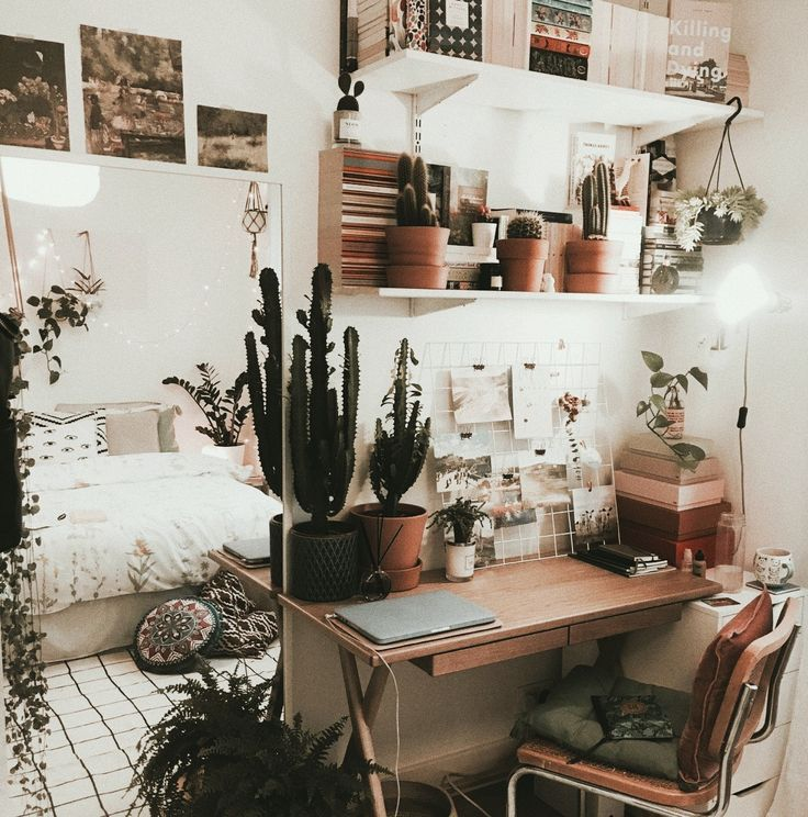 Photo of Boho vibes indoor plants space