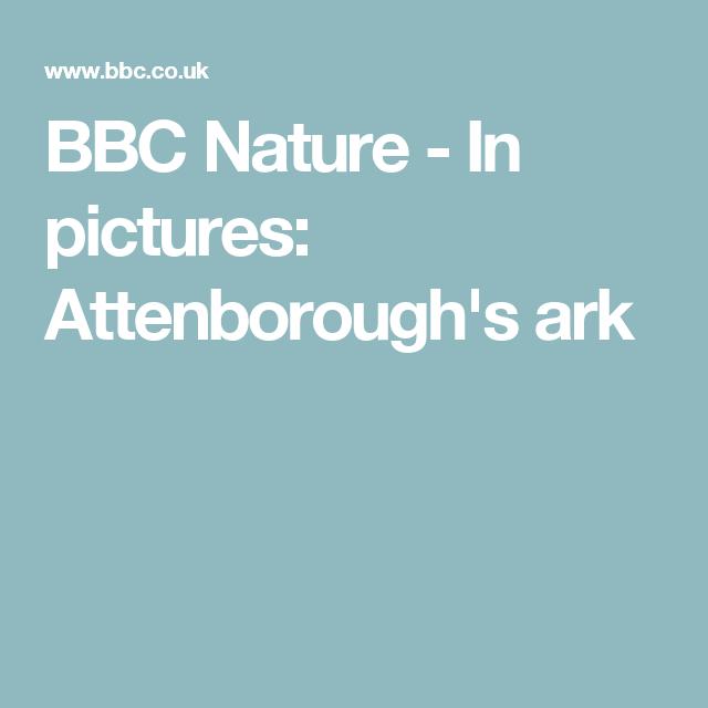 BBC Nature - In pictures: Attenborough's ark