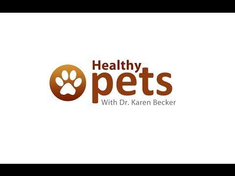 Dr Becker S Facebook Live Presentation On Fleas Ticks And