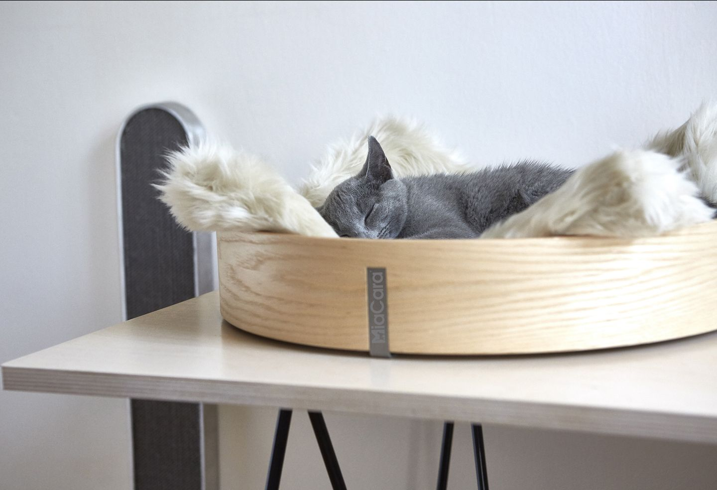Delightful Anello Cat Basket / MiaCara