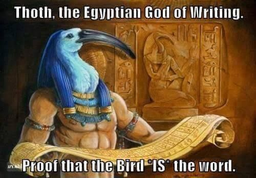 03305457cc890bb0d6b793d9e70d408d pin by bree a on funny pinterest egypt movie and memes