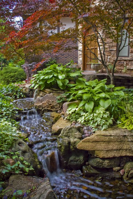 8 ways to improve your home 39 s appearance shallow water for Shallow garden pond
