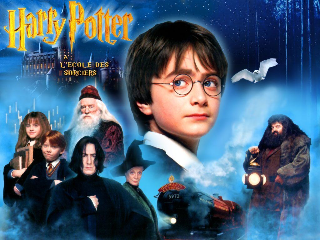 Definitely Read The Books If You Enjoyed The Movies Harry Potter Google Search Harry Potter Film Harry Potter Movies Harry Potter Books